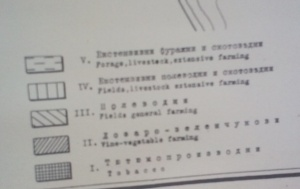 z16-1