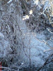 Водопада - зима.jpg2