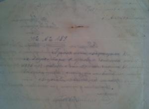 i.p.s.7